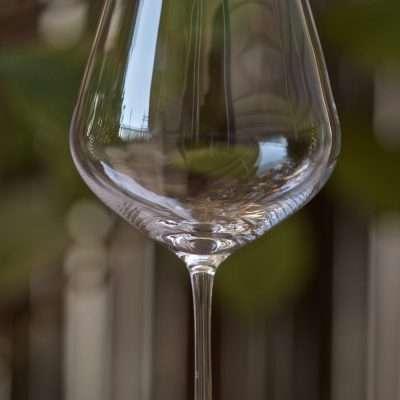 Pinot Noir Wine Glass