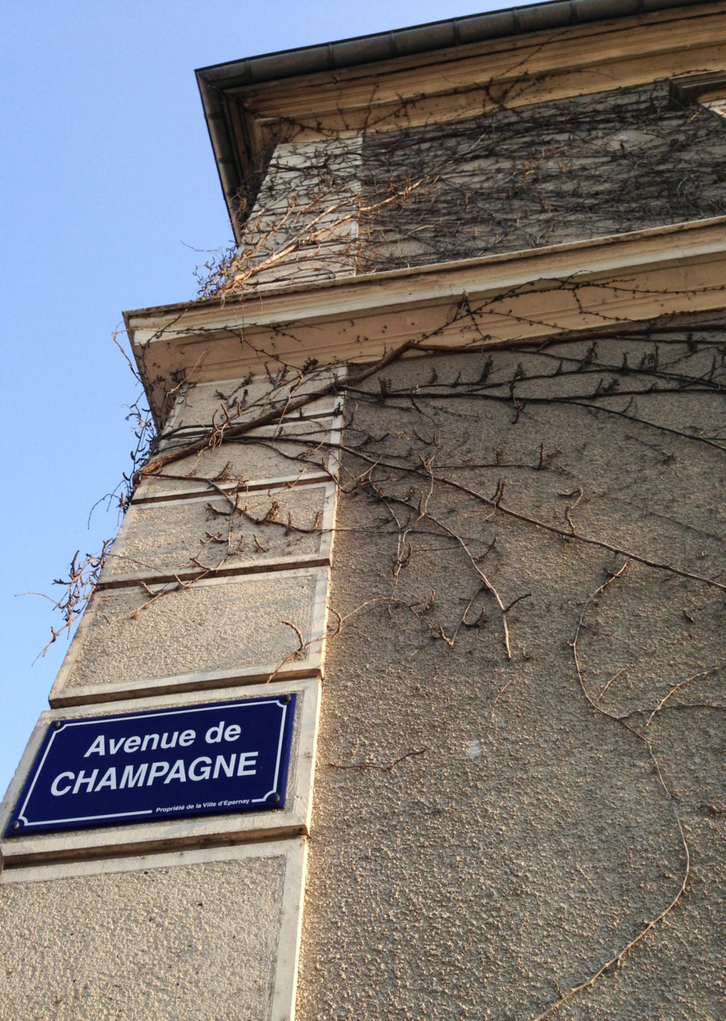 Avenue de Champagne. Photo by Gloria J. Chang.