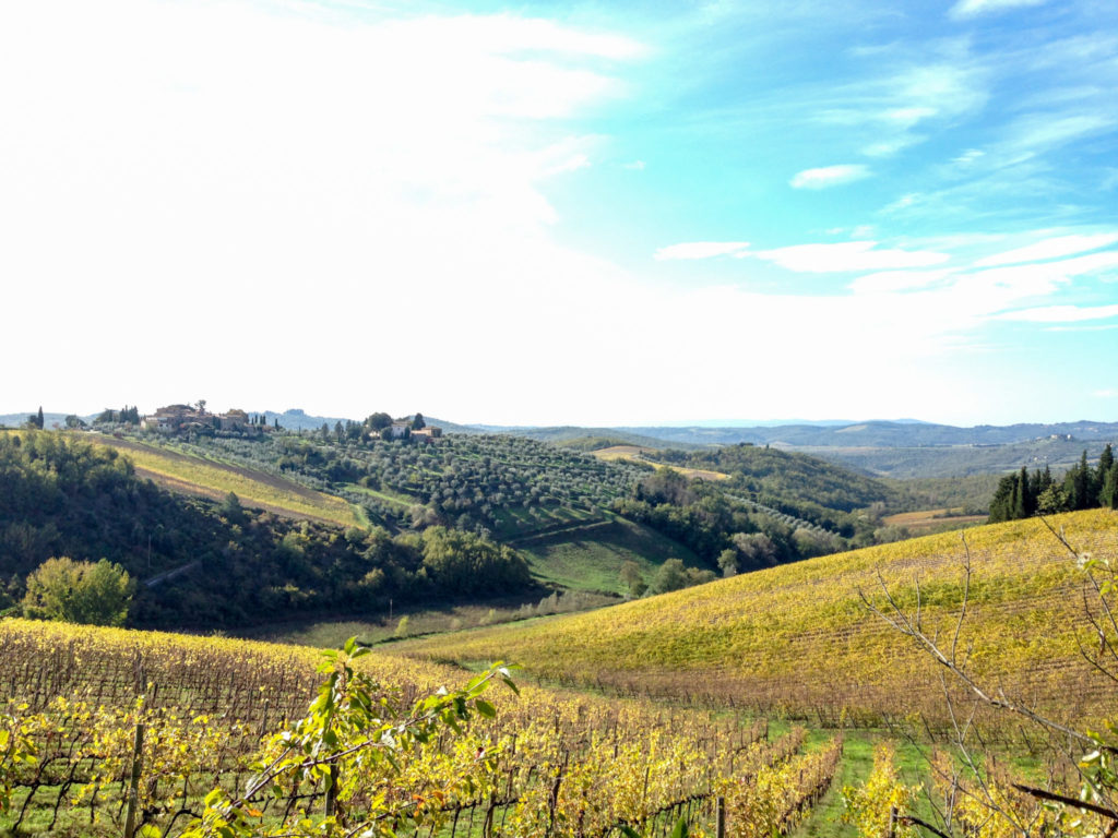 Rocca di Castagnoli vineyards, Gaiole in Chianti. Photo by Gloria J. Chang.